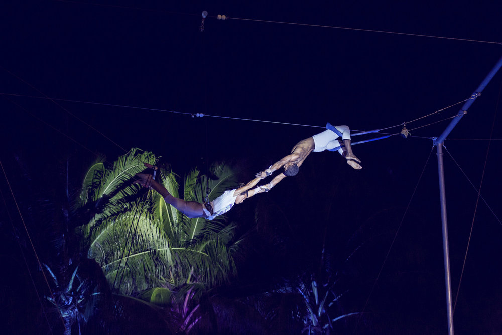 Twilight Trapeze.JPG