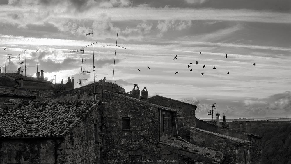 Den gamle byen lengst sør i Toscana – den med alle fuglene! Her er de beste bildene fra to opphold i denne helt spesielle byen.   Fotogalleri