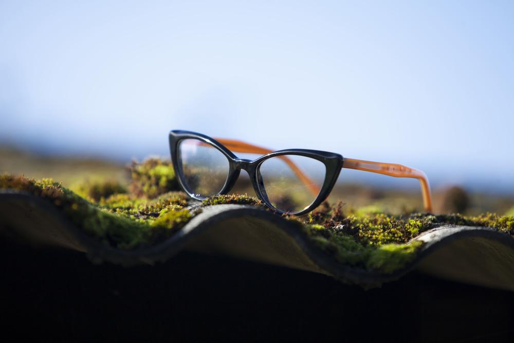 bril 13.jpg