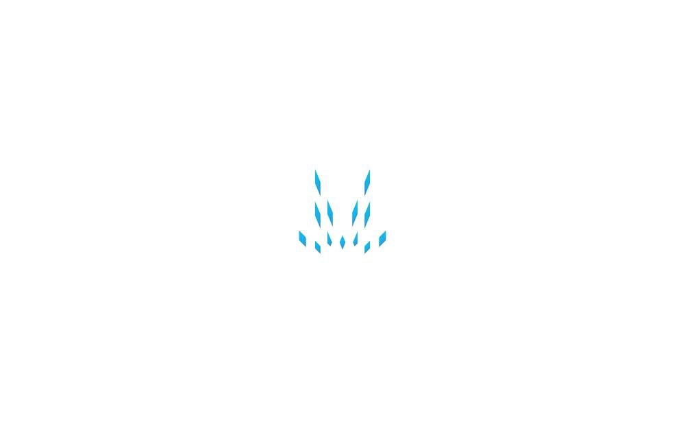 MFIC_logotype_cs.jpg