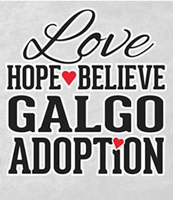 Love, Hope, Believe Galgo Adoption Inc