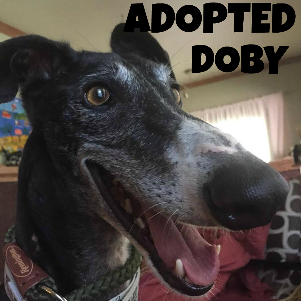 Doby-Adopted.jpg