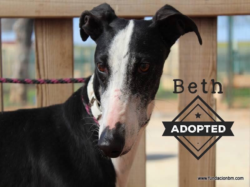 Beth.Adopted.jpg