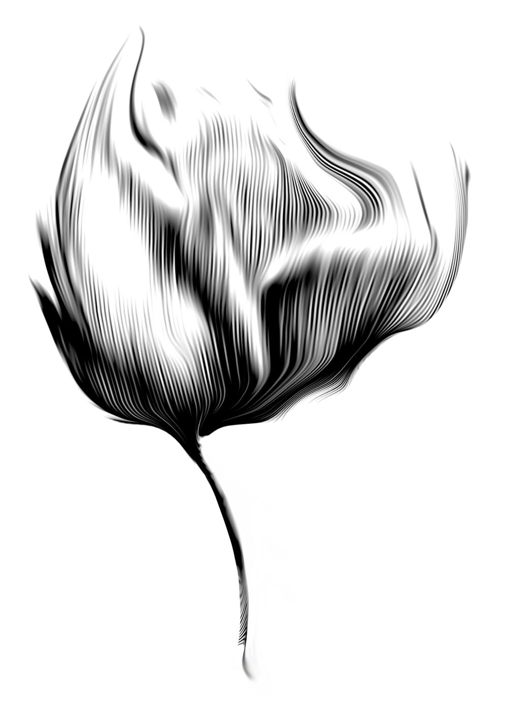 moworkshere.com-tulip.png
