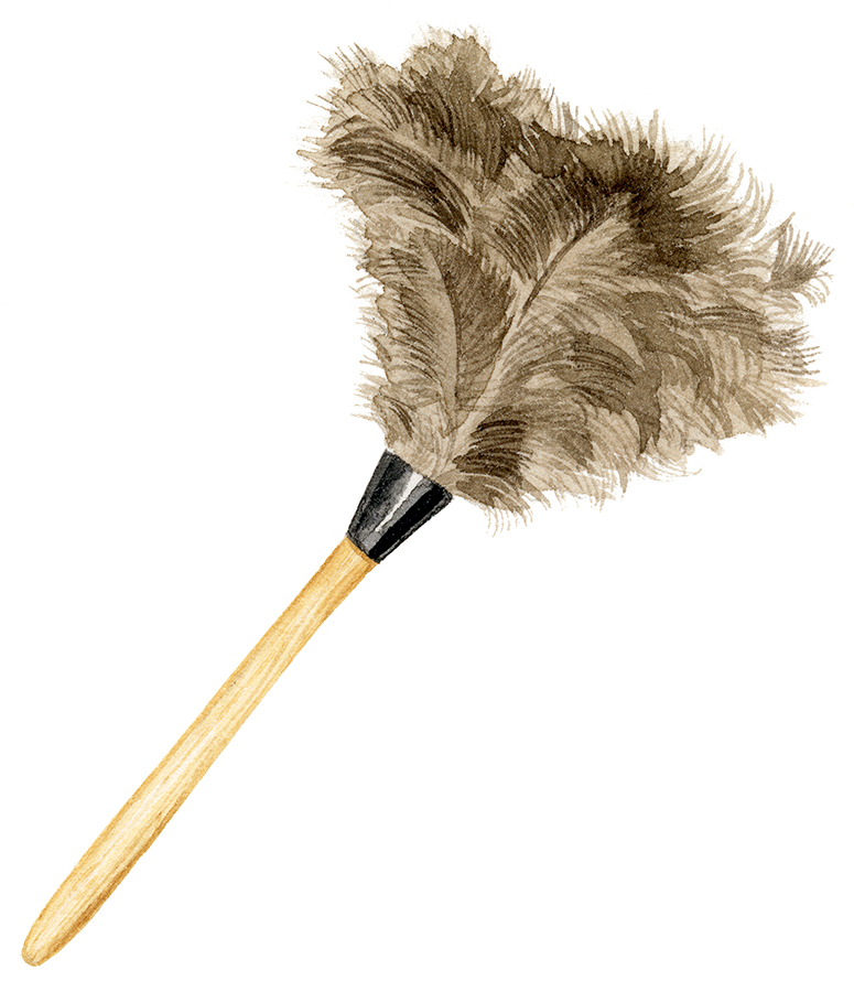 feather-duster2-sm.jpg