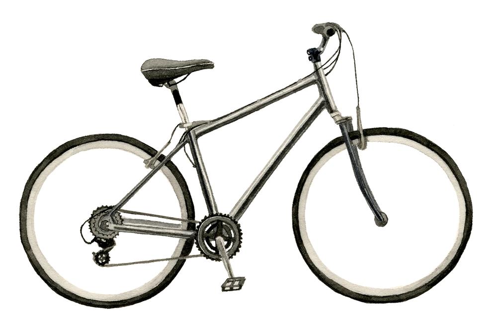 NYT-bike-lrg.jpg