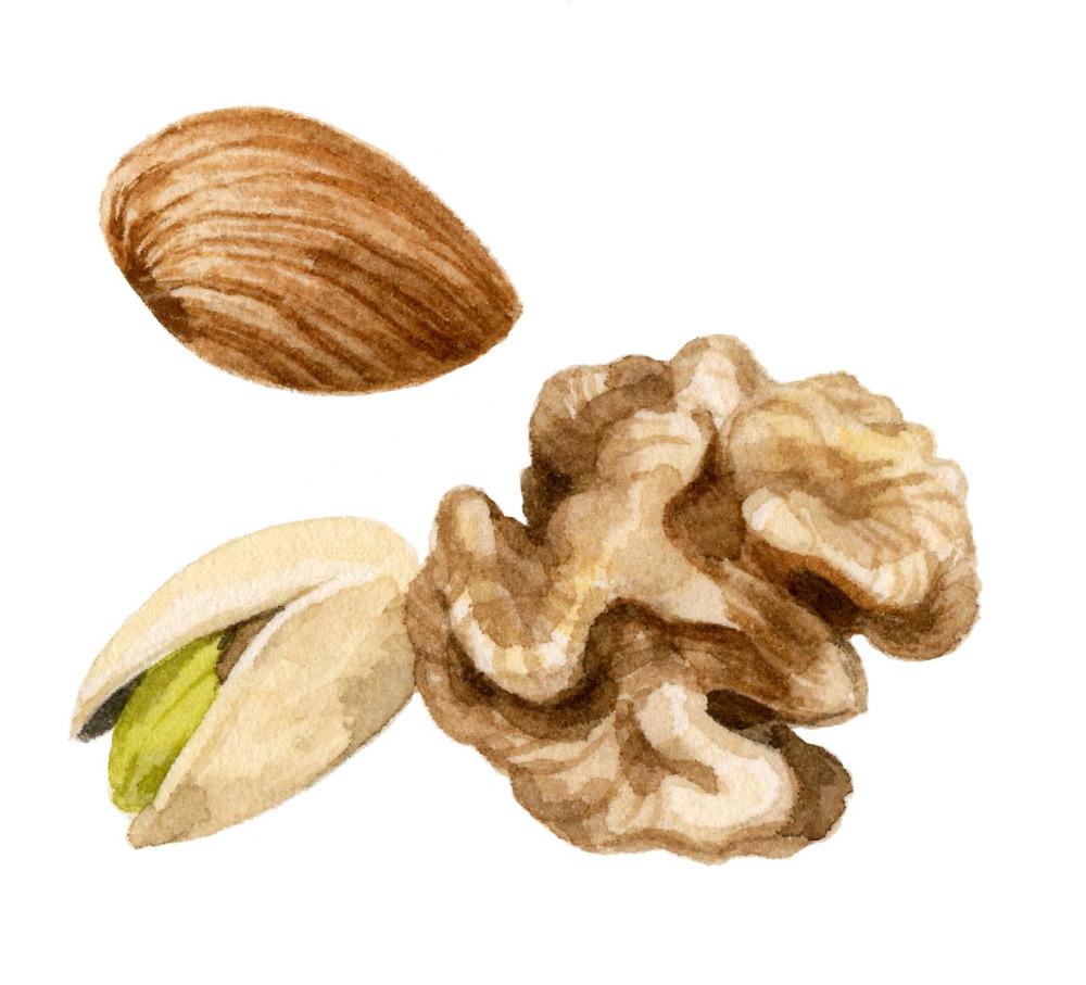 nuts-lrg.jpg