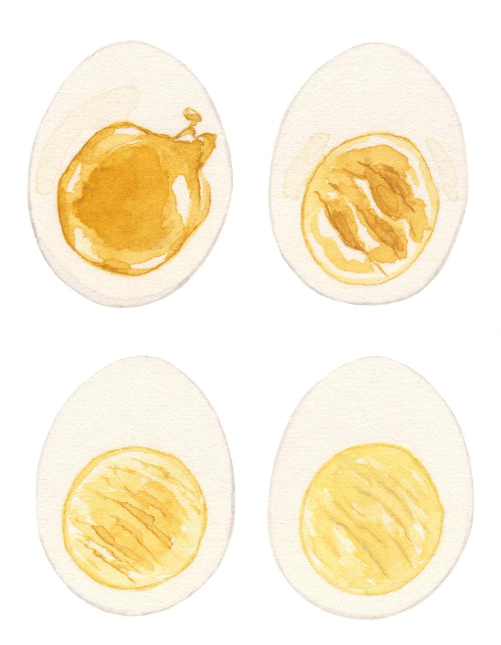 eggs-lrg.jpg