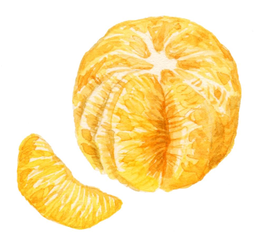 orange3-lrg.jpg
