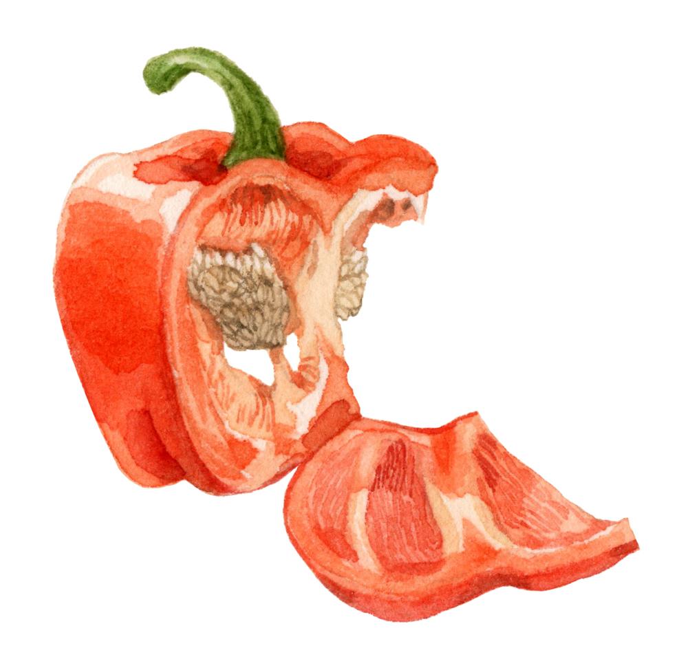 pepper2-lrg.jpg