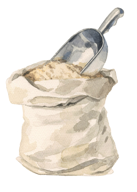 flour-lrg.jpg