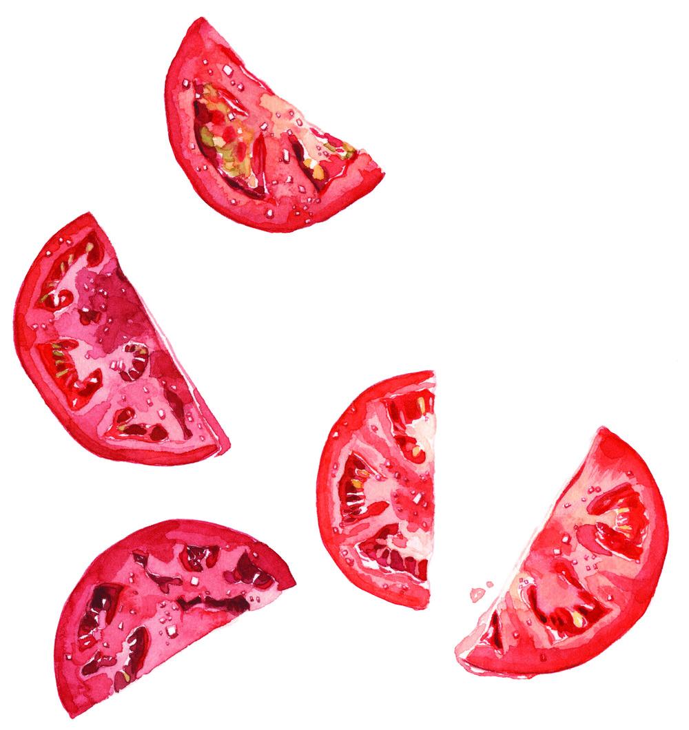 tomatoes-lrg-print.jpg
