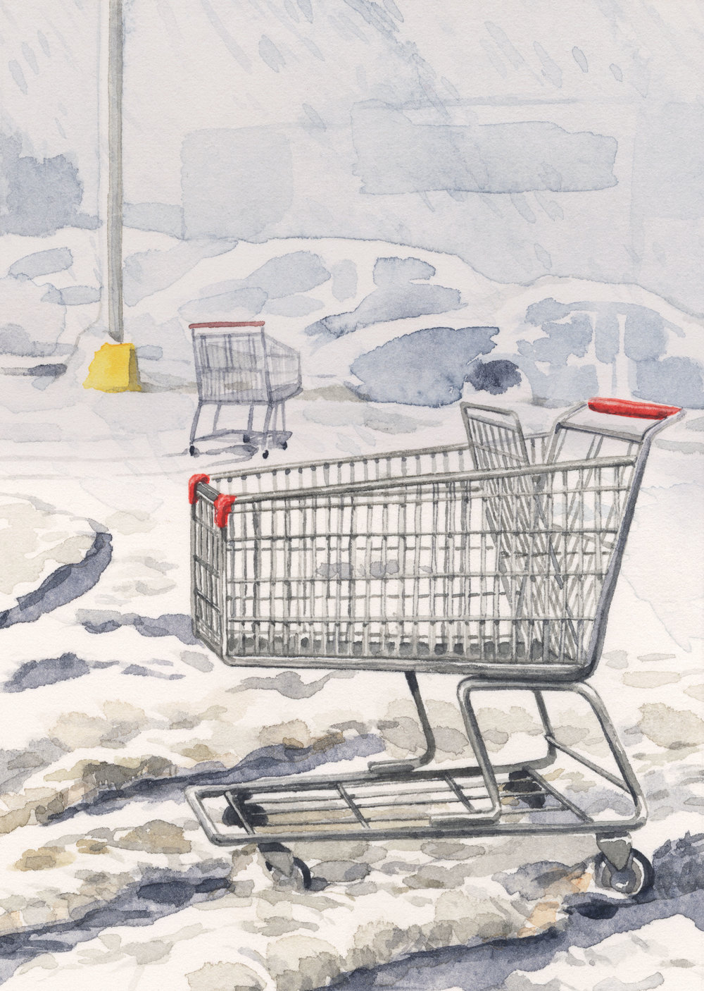 grocery-carts-web.jpg