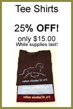 Tee Shirt Sale.jpg