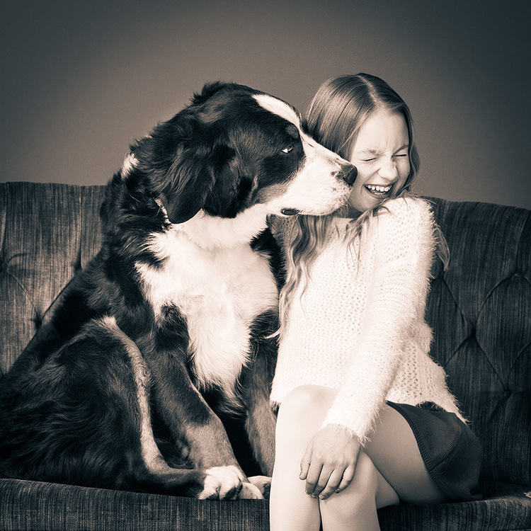 Bernese_mountain_dog_with_girl_picture.jpg