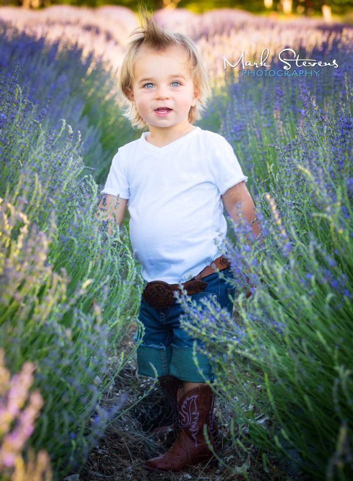 2 year birthday photo shoot lavender field colorado