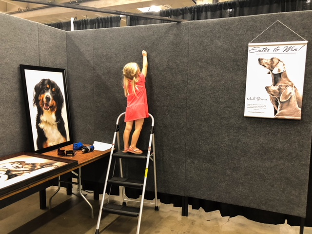 Denver Pet Photography Expo Setup