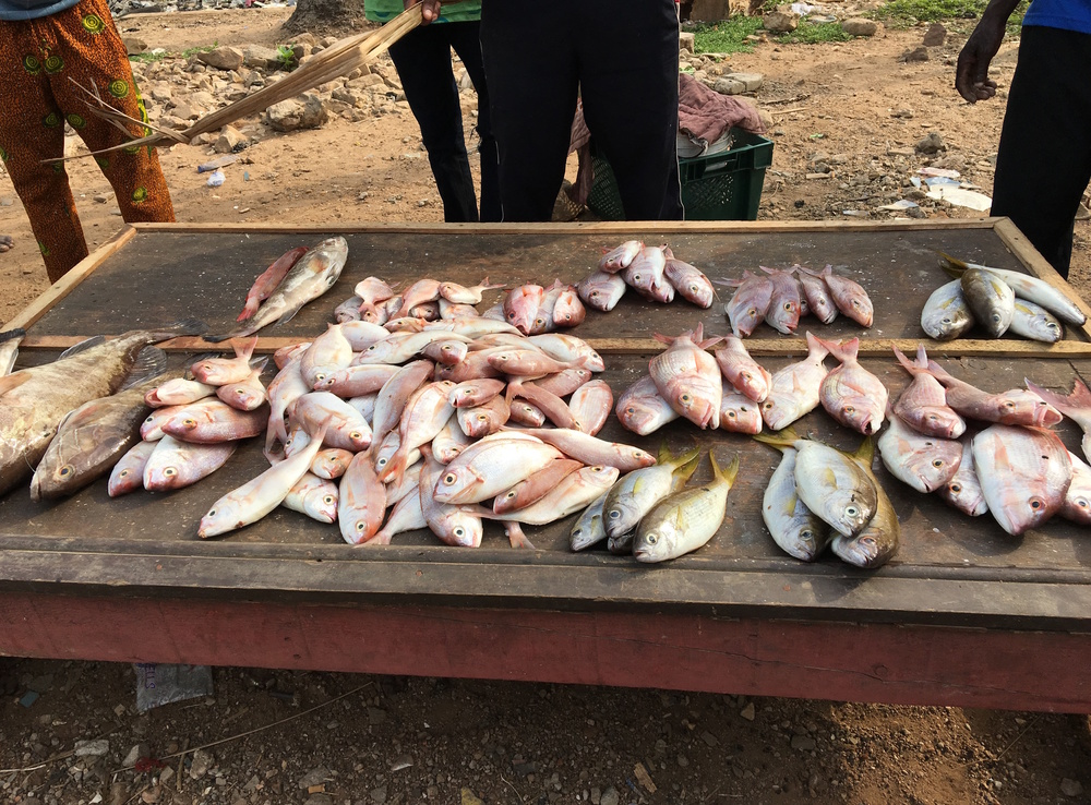 Fish sellers in Osu
