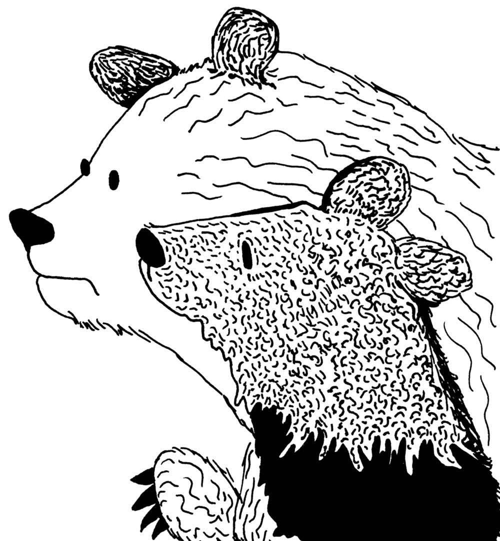 bears bitmap.jpg