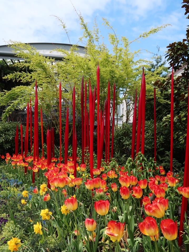 Seattle Garden