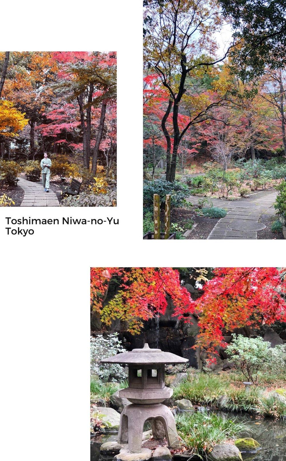 japanese+onsen+hot+springs+tokyo