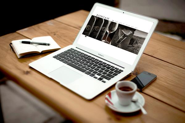 eonina_laptop.jpg