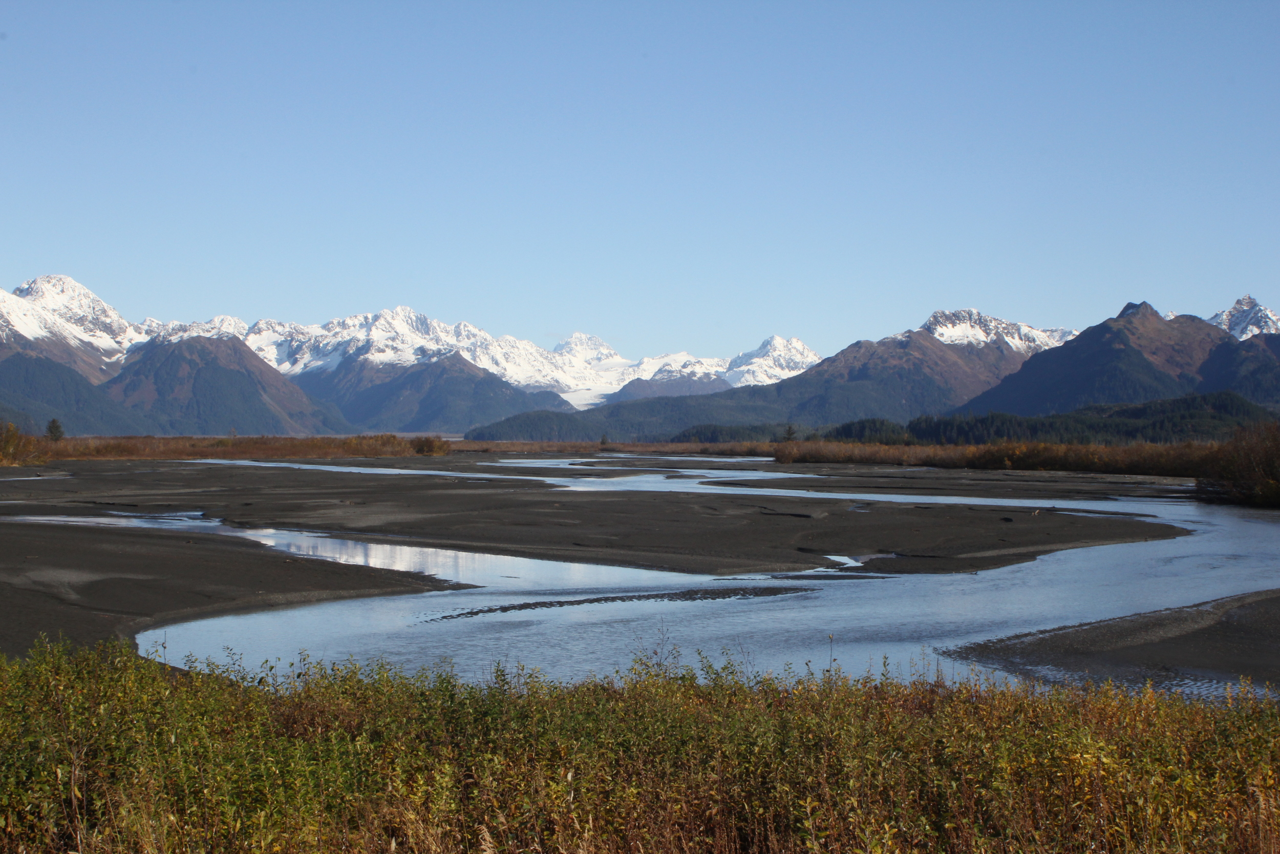 Braided River Bed