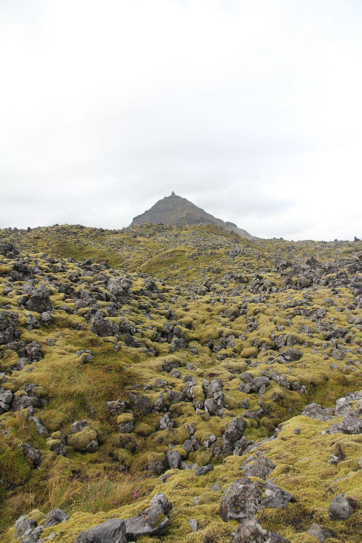 Near Arnarstapi