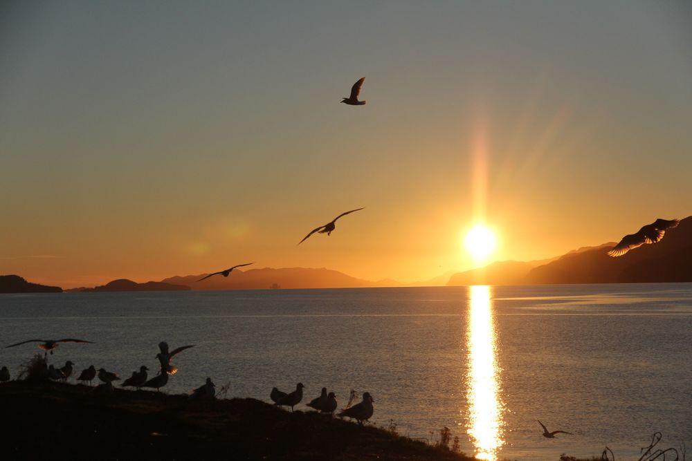 orca inlet-sunset-Cordova-woolen travels.jpg