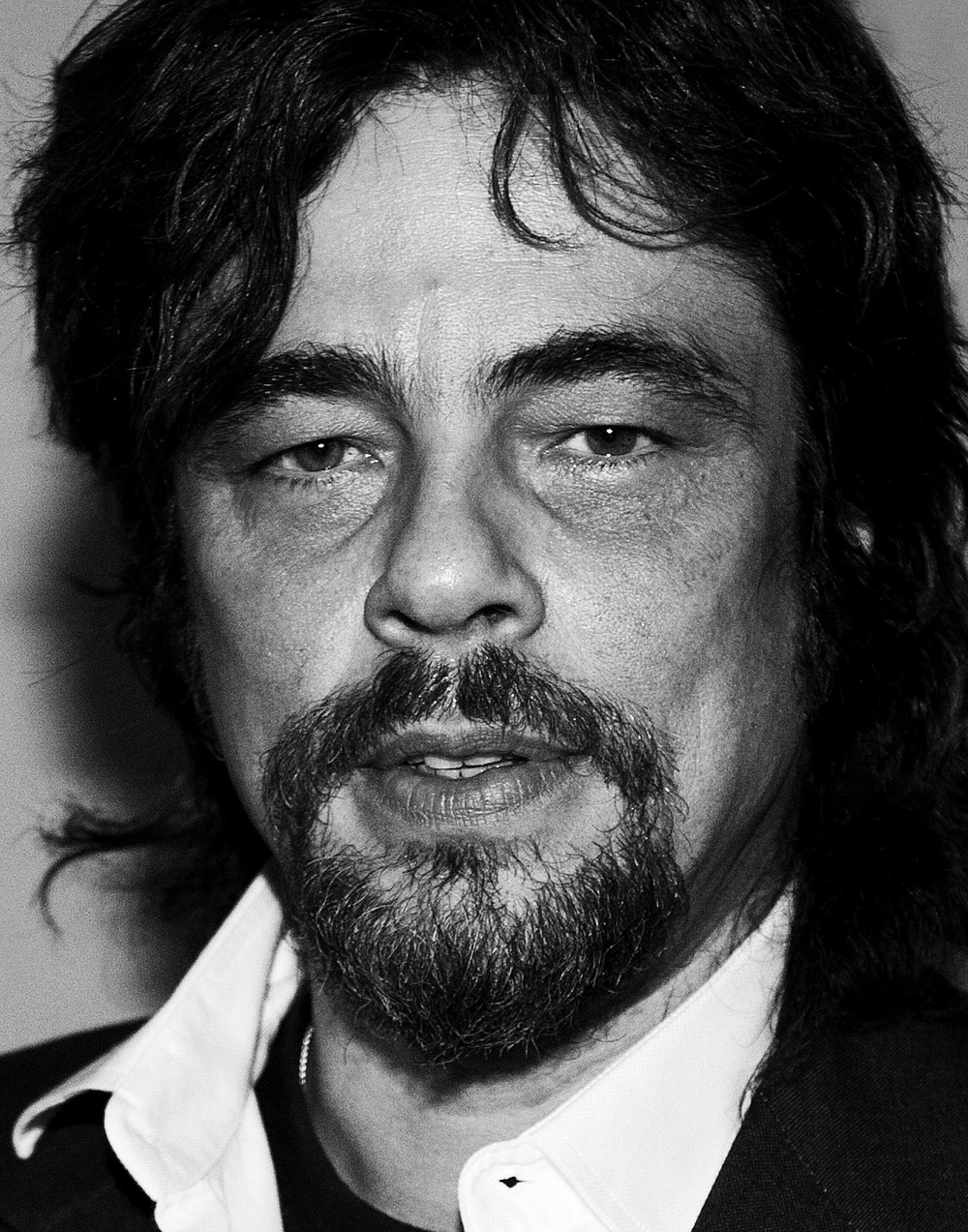 Benicio.jpg