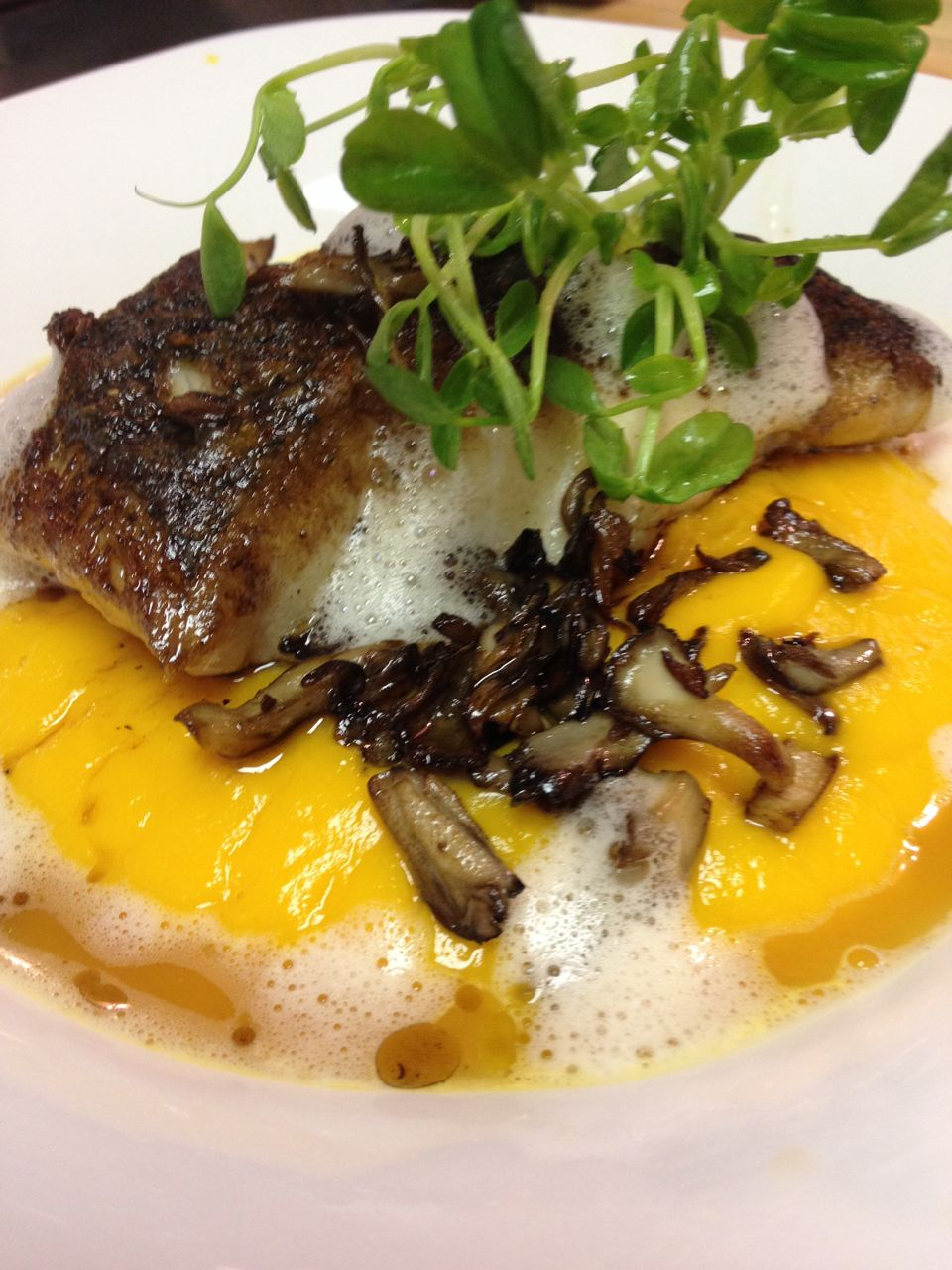 Striped Bass with Butternut Squash Sauce, Maitake Mushrooms and Truffle Jus