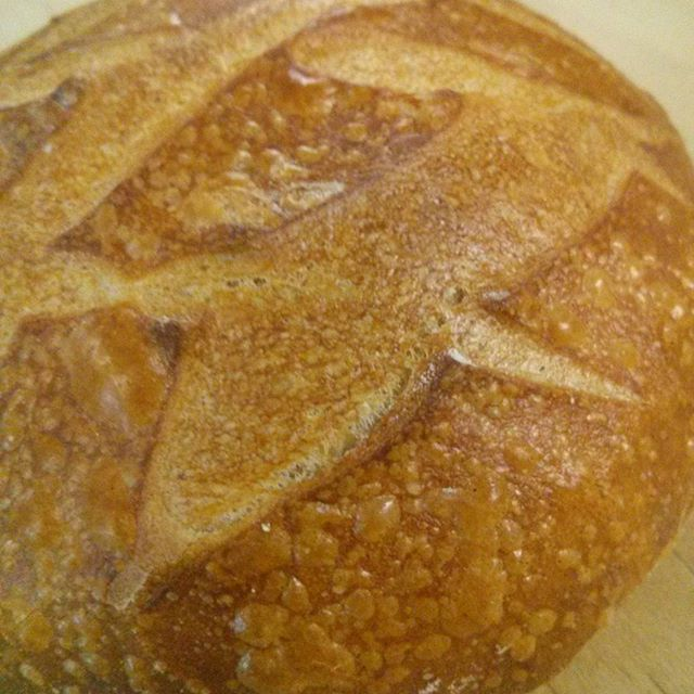 Fresh Delaware Sourdough #sourdough #chefshavende #delaware