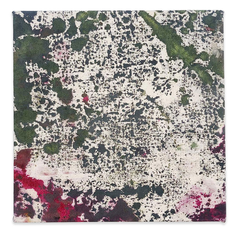 Untitled , 2018 oil, house paint and dye on canvas 10x10 inches