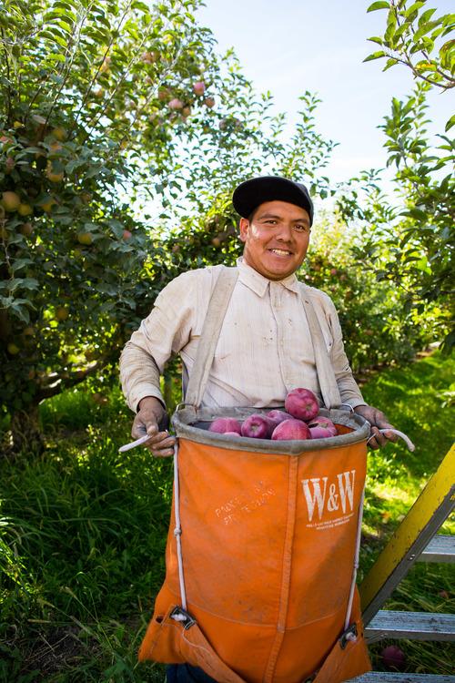 Broetje Orchards