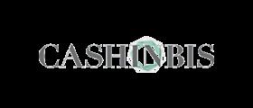 cashinbis-logo.png