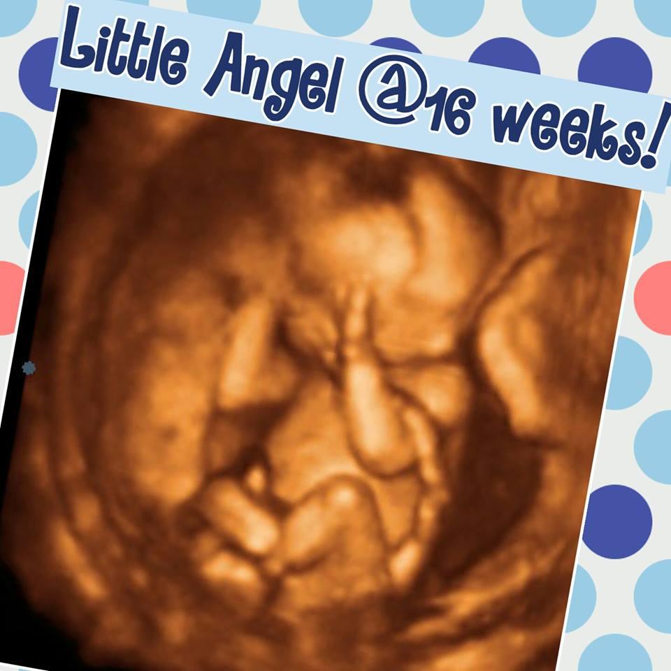 16 weeks1.jpg