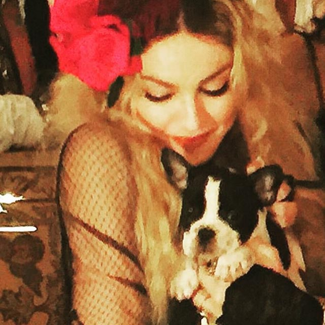 Gypsy Rosa Lee - pies jako prezent urodzinowy/Instagram_@madonna