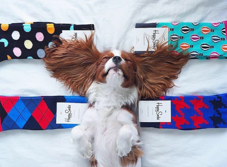 Instagram: @happysocks