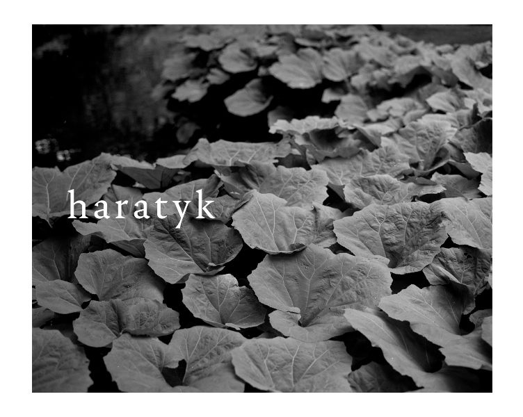Haratyk_ss18_23.jpg