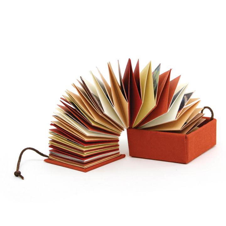 Evan Book In Box.jpg