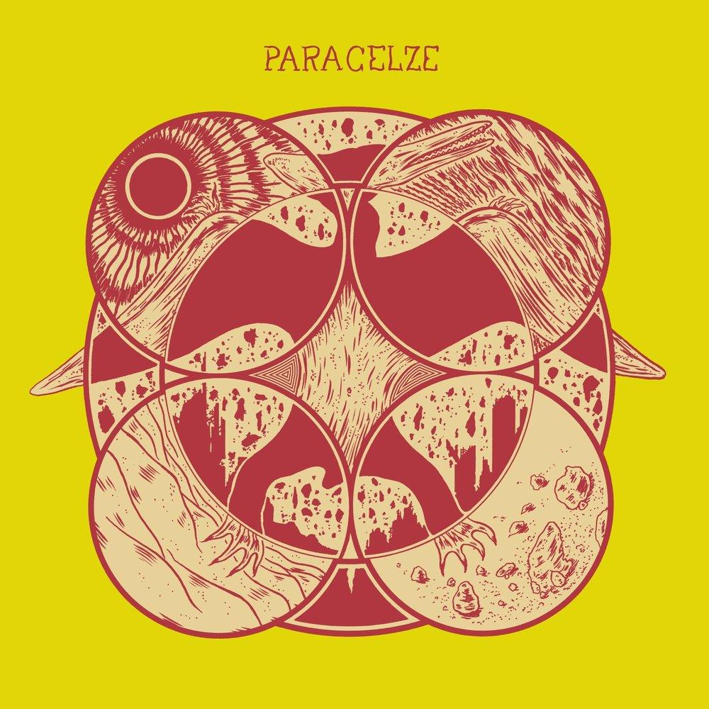 PARACELZE - PTERODACTYLE