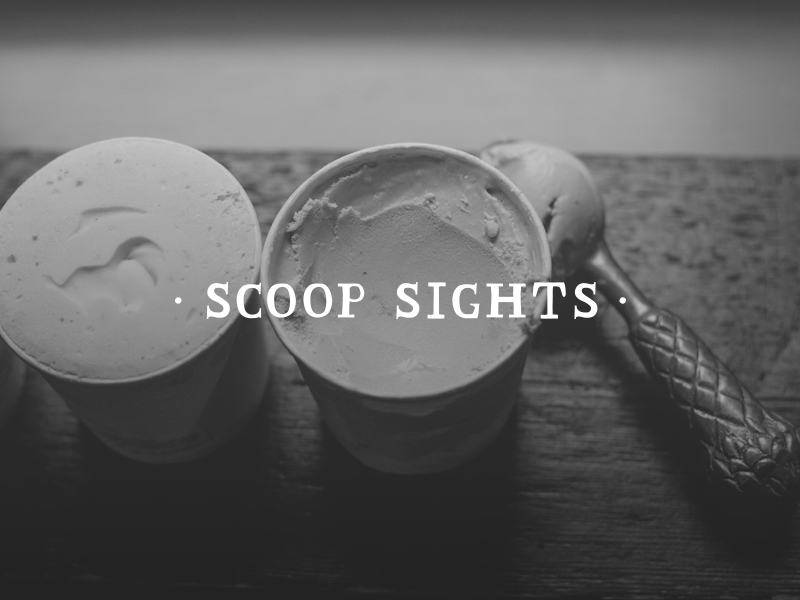 DAY 7 - SCOOP SIGHTS