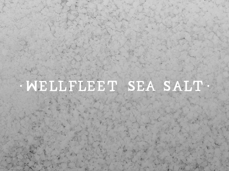 DAY 19 - WELLFLEET SEA SALT