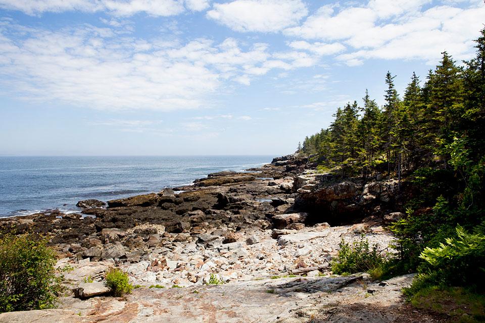 updated-23-loveleaf-co-maine-picnic-hike-landscape.jpg