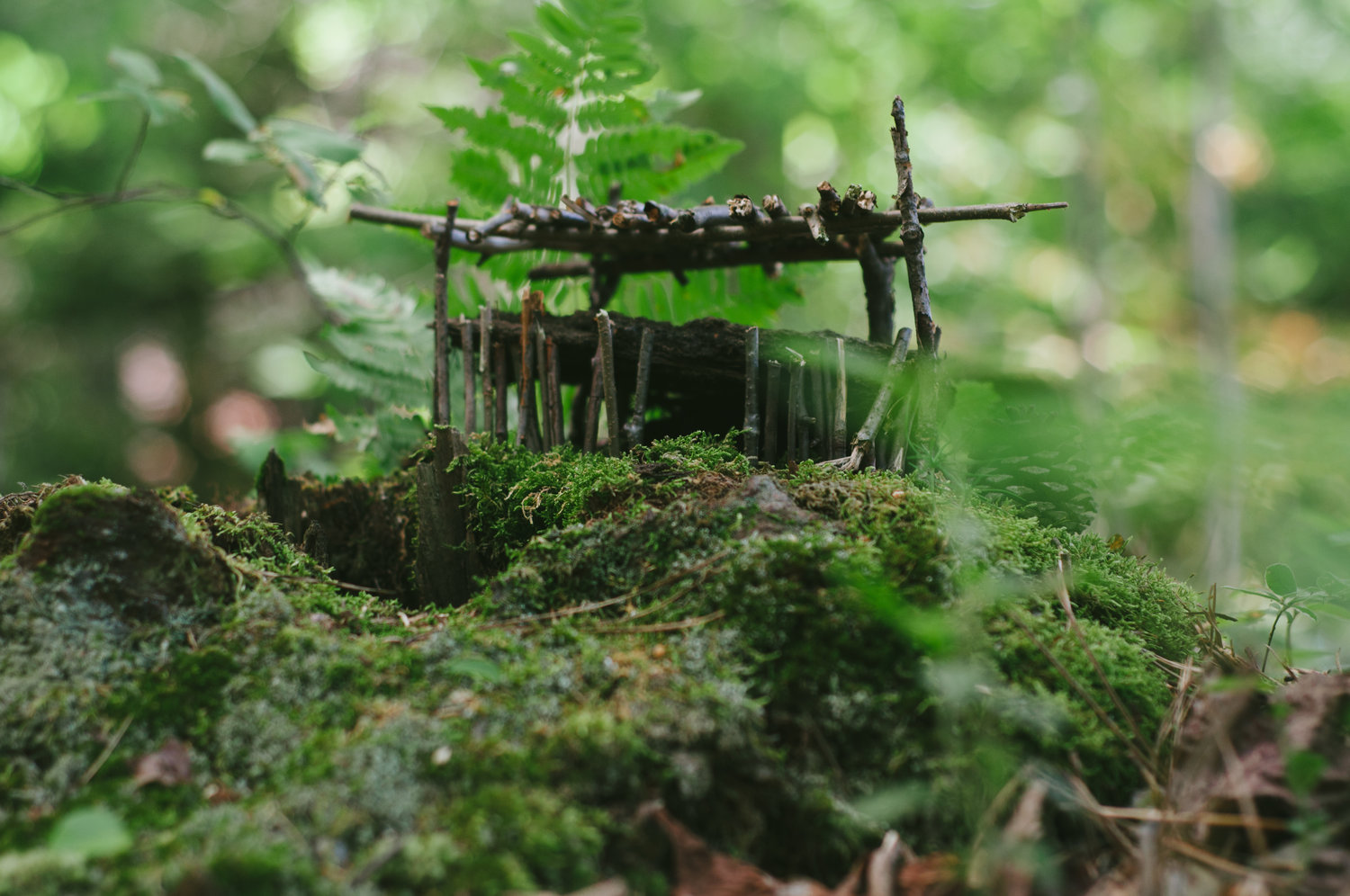 The Wild Land of Fairy Houses — tell New England