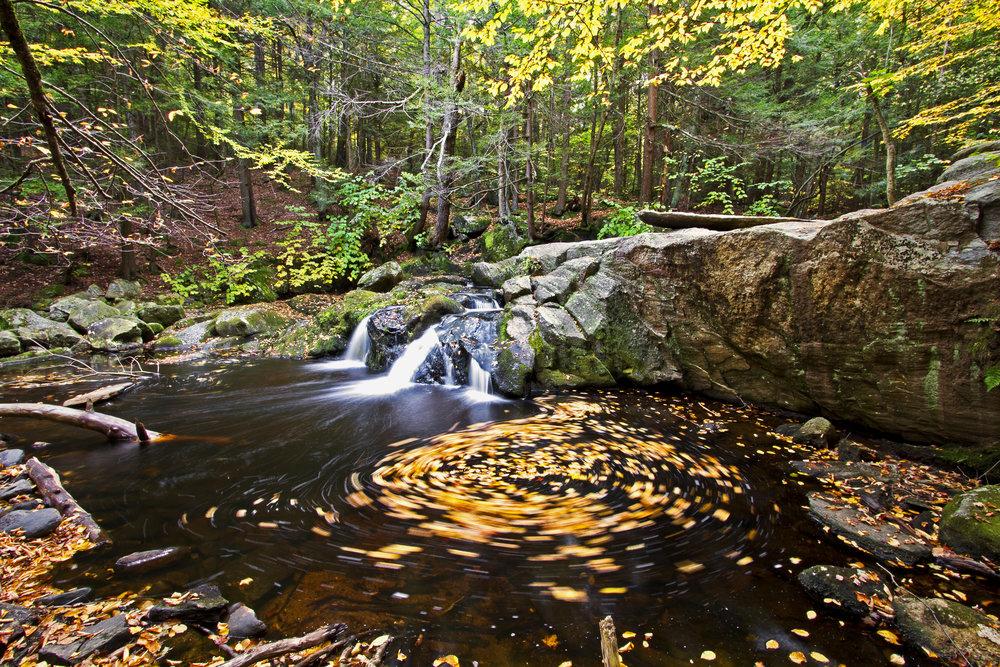 AutumnFoliageTour 090_2.jpg