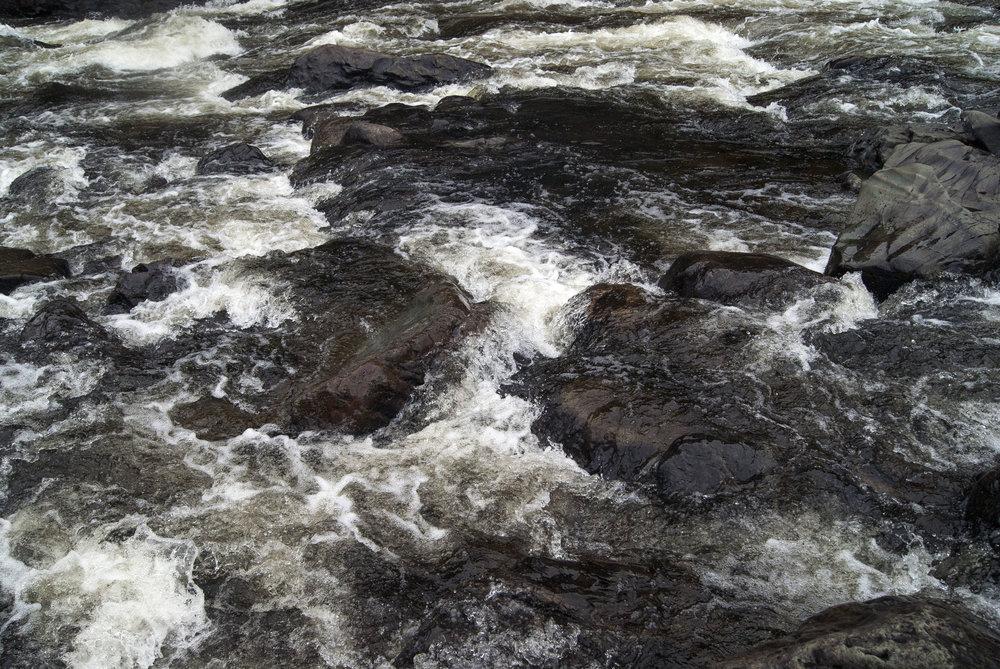 Jess Beer - River .jpg