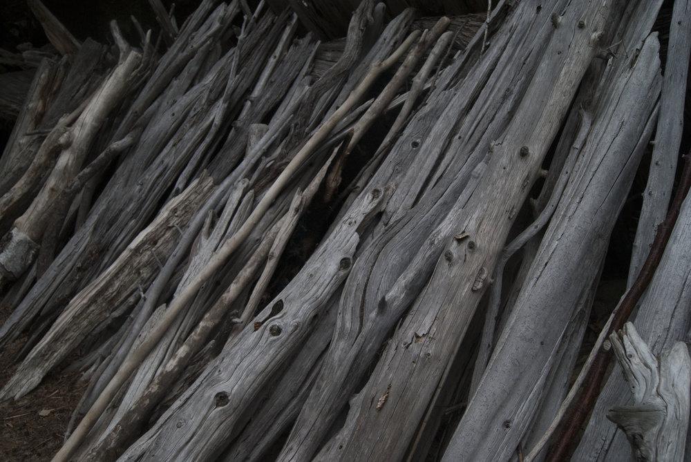 Jess Beer - Driftwood .jpg