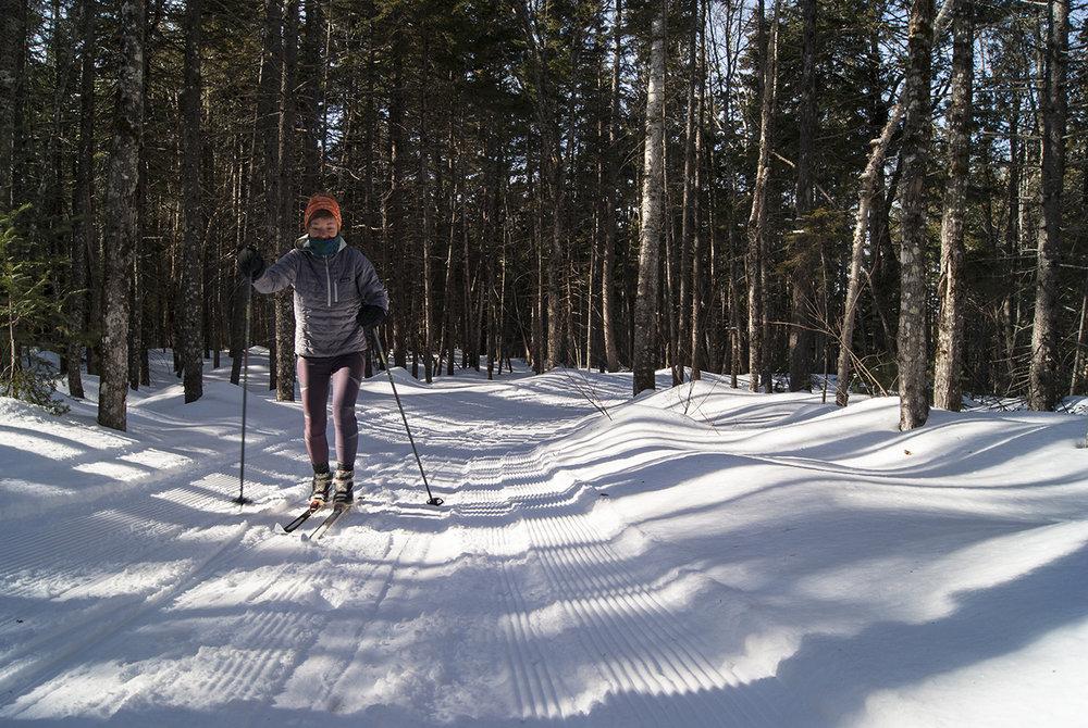 5 Hanni Skiing.jpg