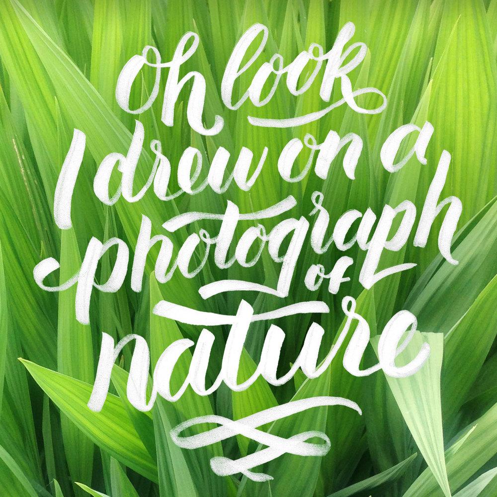 I-drew-on-natureWeb.jpg